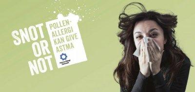Høfeberramte i Skive kan også have astma